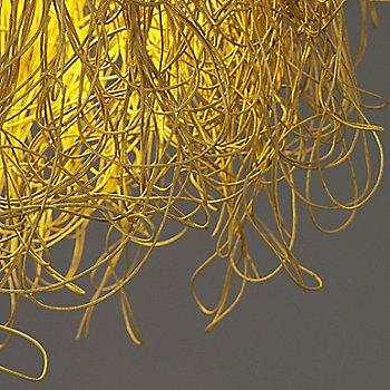 Gold Yellow / Detail shot