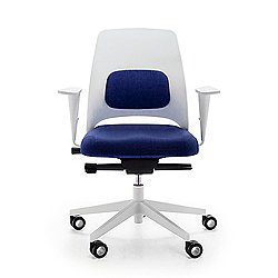 Arin Lumbar Support Office Chair