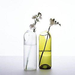 tranSglass Two Hole Vase