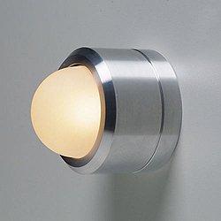 Ledra AL-C Outdoor Light