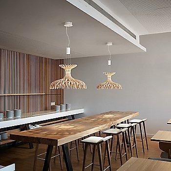 Dome LED Pendant / in use