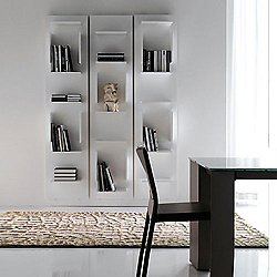 Fifty Bookcase