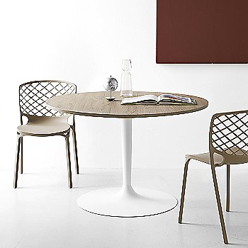 Gamera Chair with Planet Round Table