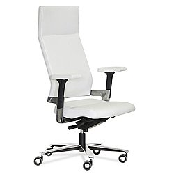 Lacinta Office Chair