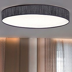 Slim Ceiling Light