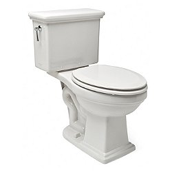 Otis Two Piece High Efficiency Elongated Watercloset with Molded Wood Seat