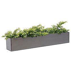Amelie Garden Box