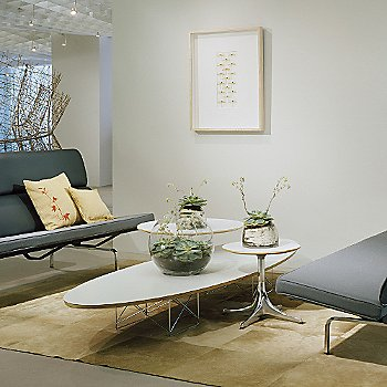 Delicieux Mouse Over To Zoom. Eames Elliptical Table