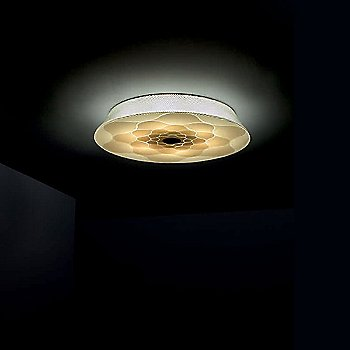 Drop LED Wall / Ceiling Light