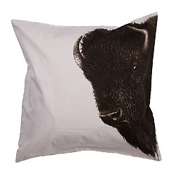 National Geographic 11 Pillow