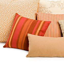 Modern Accent + Throw Pillows | YLiving