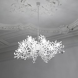 Coral Chandelier