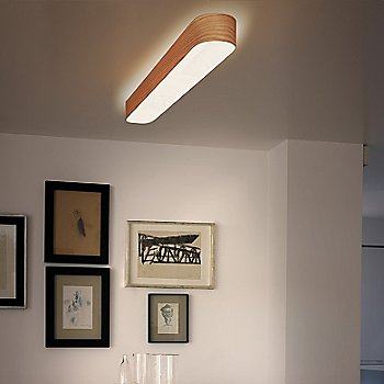 I-Club Large Wall/Ceiling Light, in use