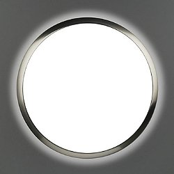 2346 Ceiling Light