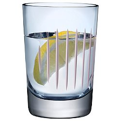 Parrot Water Glass Set of 2