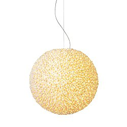 Evolutionary Pendant Light