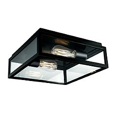 Capture Outdoor Flushmount by Norwell - OPEN BOX RETURN