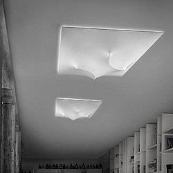 In And Out Ceiling Light