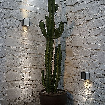 Lab Outdoor Wall Sconce, in use