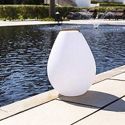 Vessel 2 Bluetooth LED Indoor/Outdoor Lamp