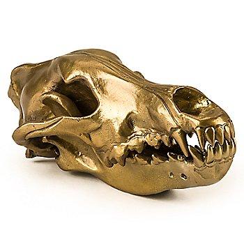 Wunderkammer Wolf Skull / Right view