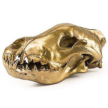 Wunderkammer Wolf Skull / Left view