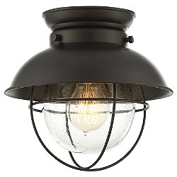 Robert Flush Mount Ceiling Light