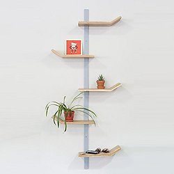 Palm Shelf