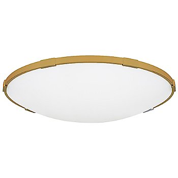 Shown in Aged Brass finish, 24 inch