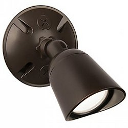 Endurance Energy Star LED Spot Wall Sconce
