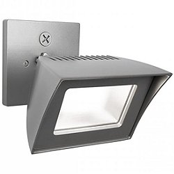Endurance Flood Outdoor/Indoor Wall Light