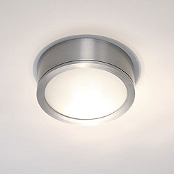 Tube Indoor/Outdoor LED Ceiling Light