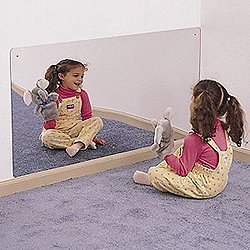 "Rectangular Mirror 48"" X 24"""