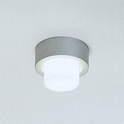 Mini Rondo Wall or Ceiling Light
