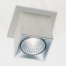 Dau Spot Flush Mount Ceiling Light