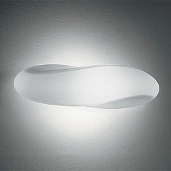 Track Ceiling or Wall Light