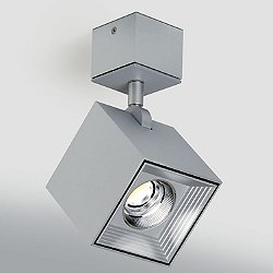 Dau LED Spot Semi-Flush Mount Ceiling Light