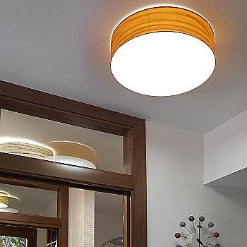 Small size / Orange