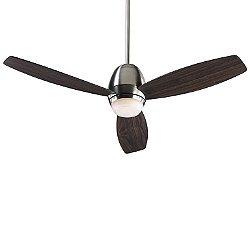 Bronx Ceiling Fan