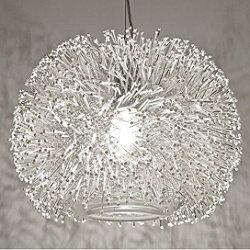 Sea Urchin Suspension Light