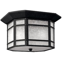 Cherry Creek Outdoor Ceiling Light