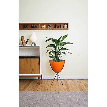 Shown in Orange, Medium stand