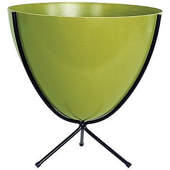 Shown in Olive, Short stand