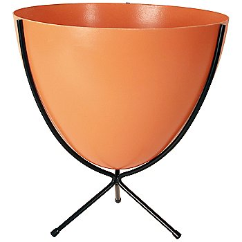 Shown in Tangerine, Short stand